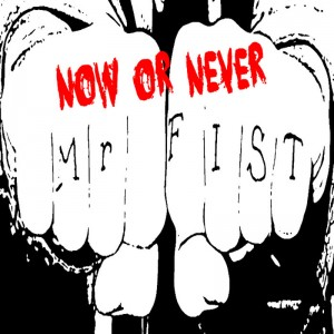 Mr FiST Cover